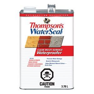 Thompson's WaterSeal Clear Low-Voc Multi-Surface Waterproofer