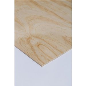 McCorry 1/4 x 4-ft x 8-ft  Appearance Grade Sanded Pine Plywood