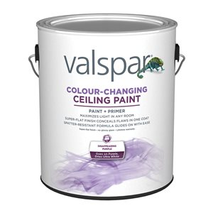 Valspar Flat White Color Changing Ceiling Paint Amp Primer