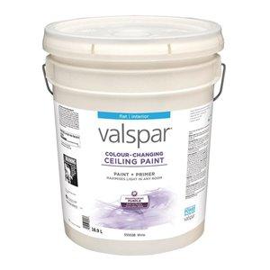 Valspar Flat White Color-Changing Ceiling Paint & Primer