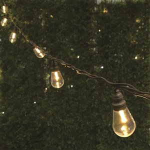 10-Count Warm White LED Edison-Style Light String