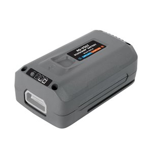 Snow Joe 40-Volt 4-Ah Rechargeable Lithium Ion (Li-Ion) Cordless Power Equipment Battery