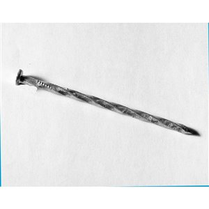 Tree Island 8-in x 0.3-in Hot-Dipped Galvanized Spiral Spike
