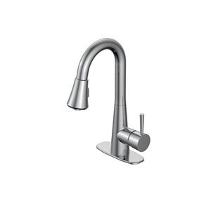 Jacuzzi Jacuzzi Carson 1-Handle Utility Sink Pulldown Faucet