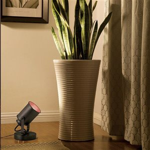 Portfolio 7-7/8-in Bronze Accent Lamp with Bronze Shade