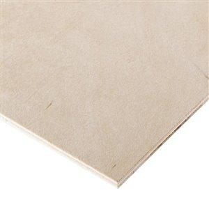 Cutler 1/4 x 2-ft x 4-ft Birch Plywood