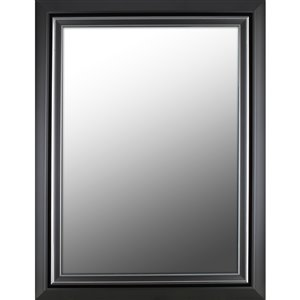 Images 2000 Fancy Frame Rectangle Framed Wall Mirror