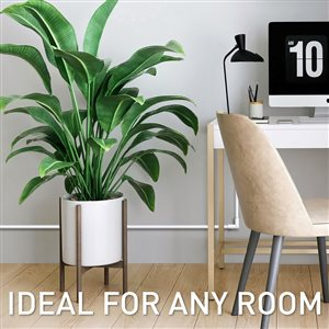 Legrand 1/2-in x 15/8-in Low-Voltage White Cord Cover