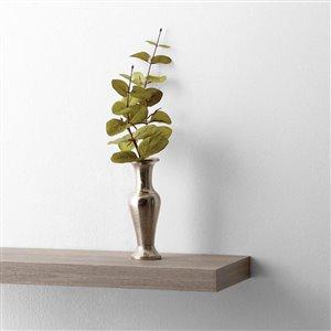 Style Selections Wall Mounted Driftwood Hidden Bracket Shelf
