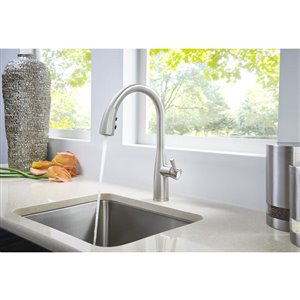 Pfister Raya Stainless Steel One-Handle Pull-Down Kitchen Faucet with Soap Dispenser