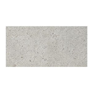 American Olean Modern Masonry 12-in x 24-in Industrial Gray Porcelain Floor and Wall Tile