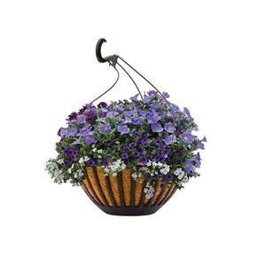 """14"""" Garden Treasures Hanging Basket"""