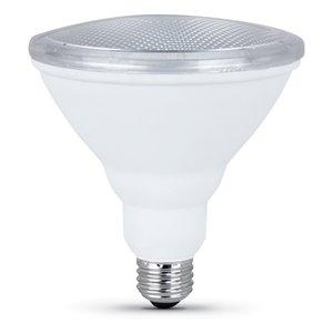 Feit Electric 10.5-Watt/750 Lumens Medium Base (E-26) LED Light Bulb (2-Pack)