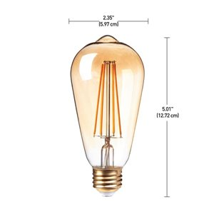 Globe Electric 60W Equivalent Soft White (2150K) Vintage Edison Dimmable Amber Glass LED Light Bulb