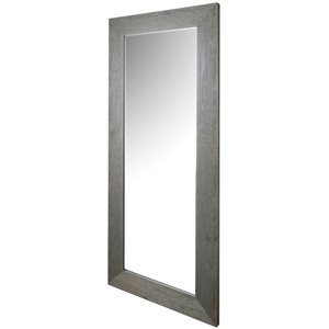 Images 2000 27.25-in x 67.25-in Gray Beveled Rectangle Framed Floor Mirror