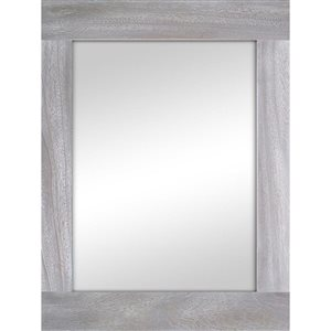 Columbia Frame Silver Metallic Rectangle Framed Wall Mirror
