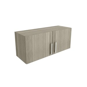 Cutler Aria 36-in x 12-in 2-Door Horizontal Wall Cabinet