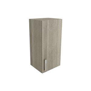 Cutler Aria 15-in x 30-in Vertical Wall Cabinet