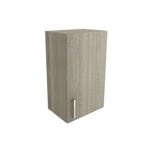 Cutler Aria 18-in x 30-in Vertical Wall Cabinet