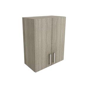 Cutler Aria 24-in x 30-in Vertical Wall Cabinet
