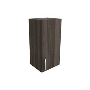 Cutler Zambukka 15-in x 30-in Vertical Wall Cabinet