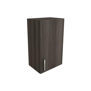 Cutler Zambukka 18-in x 30-in Vertical Wall Cabinet