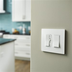 Legrand radiant 2-Gang Decorator Rocker Wall Plate (White)