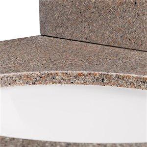61-in x 22-in Nutmeg Nutmeg Solid Surface Integral Bathroom Vanity Top