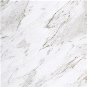 31-in x 22-in Ariston Ariston Natural Marble Undermount Bathroom Vanity Top