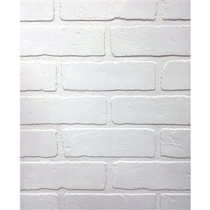 48-in x 8-ft Embossed Paintable Brick White Wall Panel