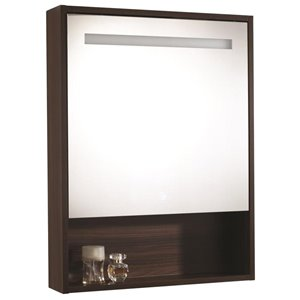 Moorefield LED Series 22.8-in x 29.9-in Rectangle Surface Medicine Cabinet with Mirror and Lights (Outlet Included)