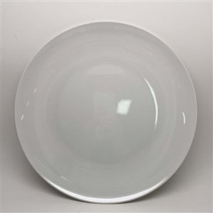11-in White Melamine Dinner Plate