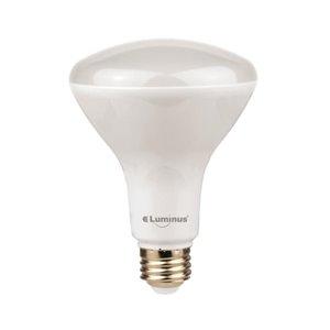 Luminus 65-Watt/650 Lumens Medium Base (E-26) Dimmable Reflector Flood Light Light Bulb (2-Pack)