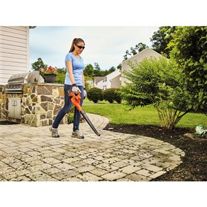 BLACK & DECKER 40-Volt MAX Lithium-Ion Light-Duty Cordless Electric Sweeper (LSW40C)