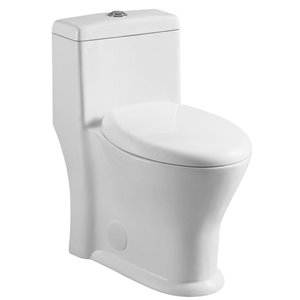 Runfine One Piece Toilet