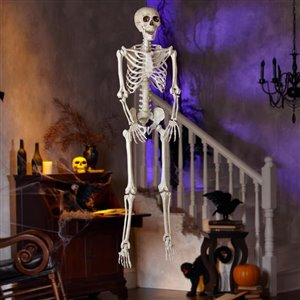 Holiday Living (No Cinematic Universe) Usage Skeleton  (Unlit) (Unlit) (Unlit) Lights