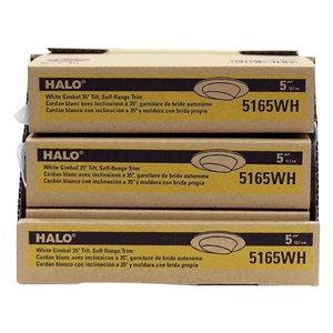 Halo 6 Pack Halo E26 0 Watt Equivalent White Led Recessed Retrofit Downlight Fits Housing