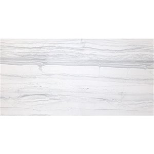 Avenzo Ice Porcelain Floor and Wall Tile