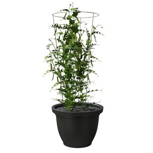 33-in Steel Tomato Cage