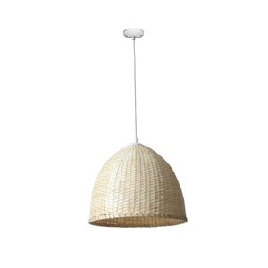 Project Source 1 Light C-Grass Pendant