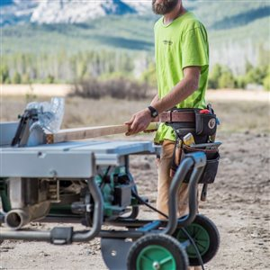 Metabo HPT (was Hitachi Power Tools) 36V MultiVolt Brushless 10-in Table Saw (Tool Body Only)