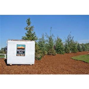 5.5 Cubic yard(s) 100% cedar Shredded Bulk Mulch