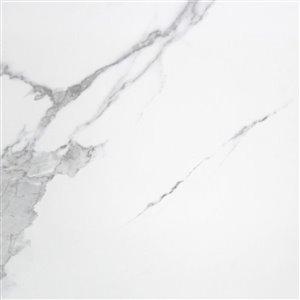Mono Serra Group Mono Serra Carrara Porcelain Tile (Common: 24-in x 24-in; Actual: x 23.5-in)
