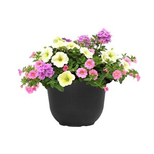 """8"""" Mother's Day Planter"""