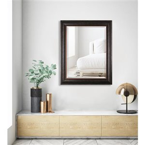 Images 2000 24-in x 30-in Brown Framed Mirror