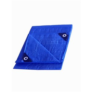 Project Source TARP 10X 12-ft BLUE 76gsm