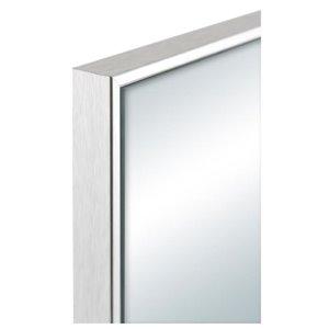 14x54-in Moderna Door Mirror Silver